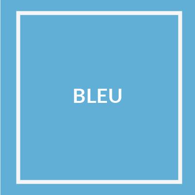 bleu@2x-100